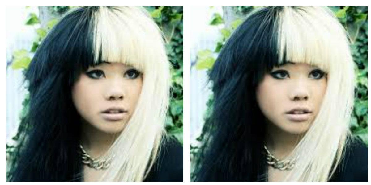 cabelo de duas cores, cor branca e preta