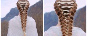 cabelo elegante, trancas de espartilha